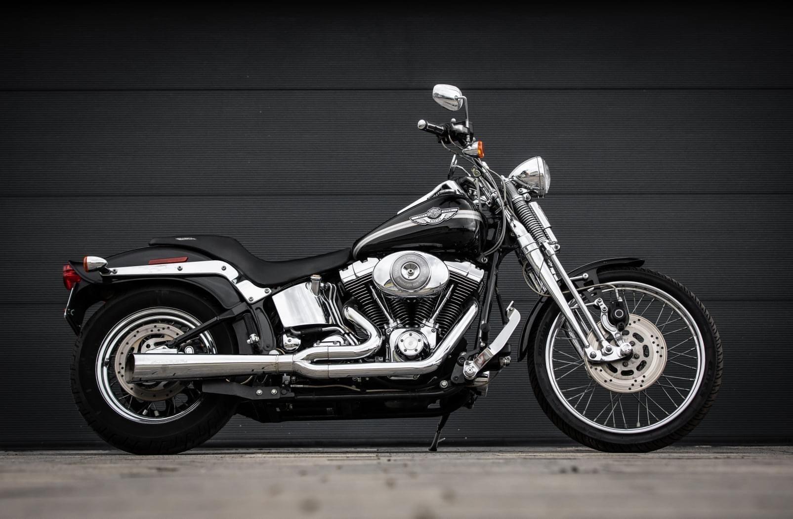 """Harley Springer Softail """"100 Jahre Edition"""""""